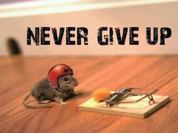dont give_up