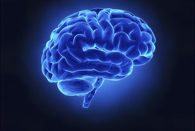 brainwiringa